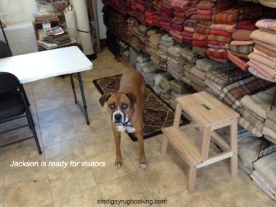 Jackson in the rug hooking studio in Pemberville, OH, take rug hooking classes